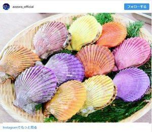 青空レストラン 愛媛県・愛南ヒオウギ貝 南宇和海 販売