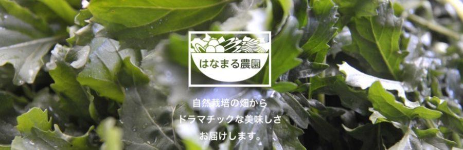はなまる農園(青空レストラン)コリンキー・夏野菜 通販