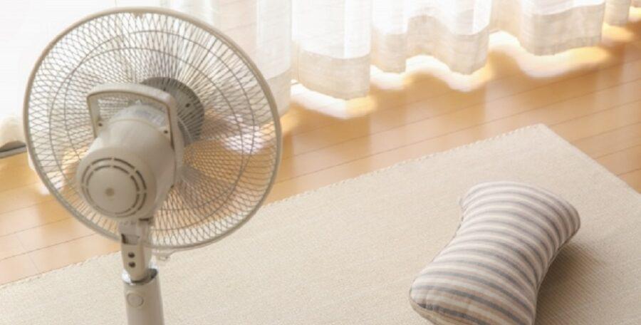 進化した最新扇風機 家電ライターイチ推しの扇風機はこれ